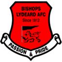 bishops lydeard lfc
