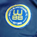watts blake bearne arc