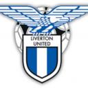 liverton united fc